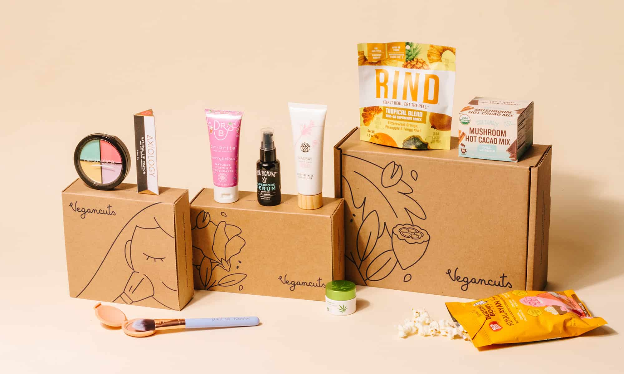 Vegancuts Dairy Free Subscription Boxes