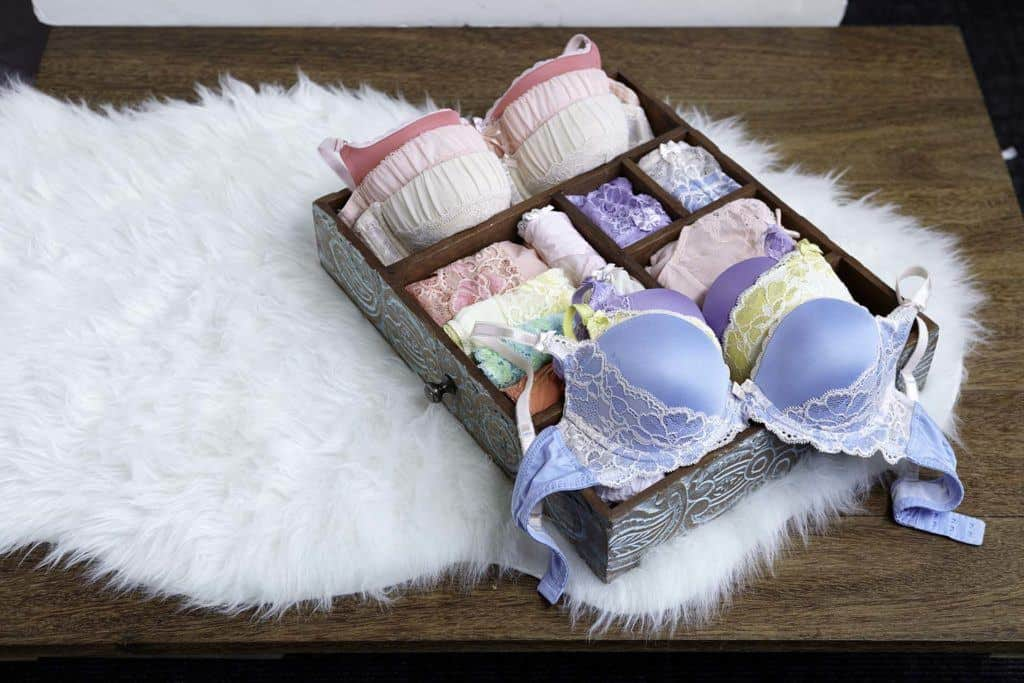 Adore Me Lingerie Subscription Box
